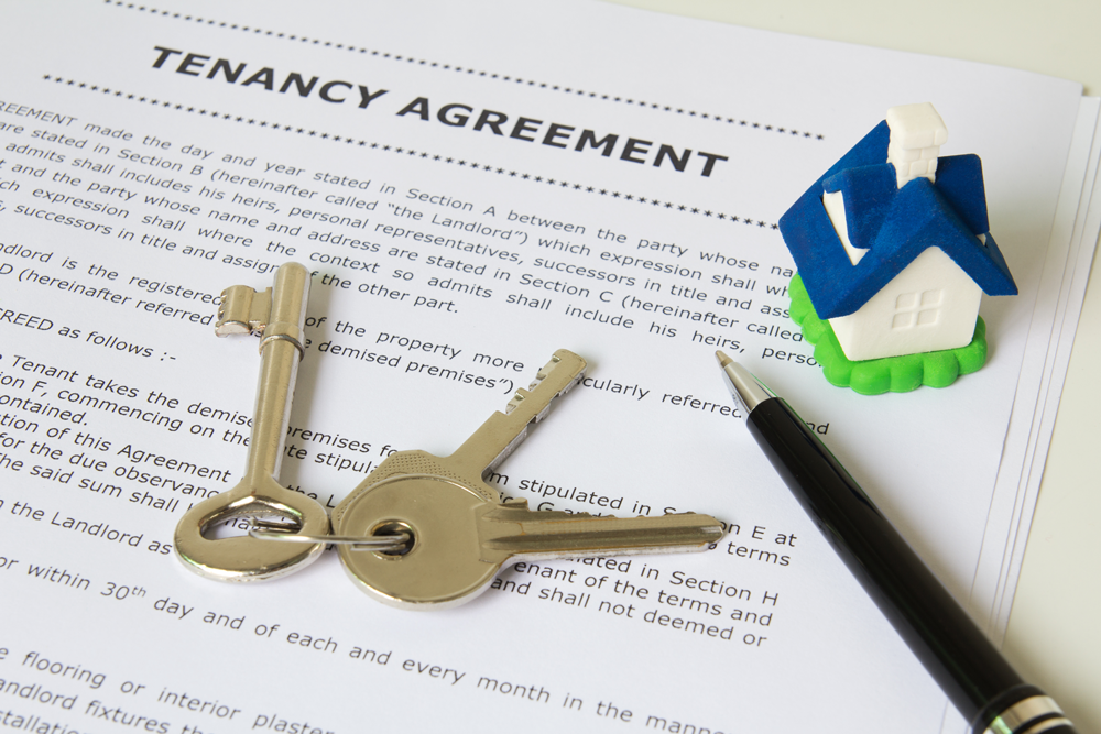 Tenancy agreement advice and services